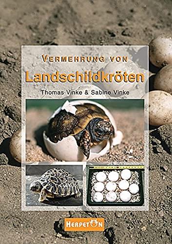Vermehrung von Landschildkröten: Grundlagen, Anleitungen und Erfahrungen zur erfolgreichen Zucht