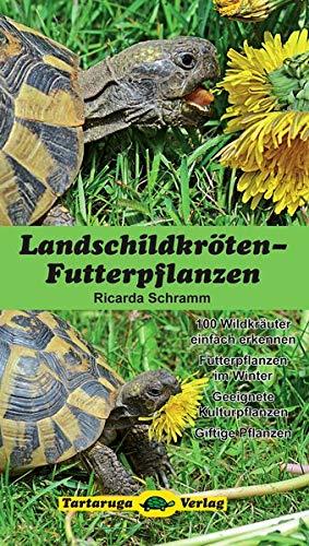 Landschildkröten-Futterpflanzen: 100 Wildkräuter einfach erkennen