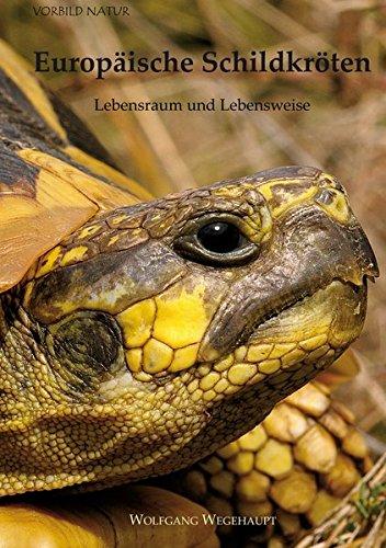 Europäische Schildkröten: Lebensraum und Lebensweise