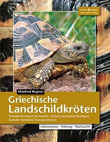 Griechische Landschildkröten: Testudo hermanni hermanni, T. h. boettgeri, T. h. hercegovinensis: (Testudo hemanni hermanni, T. h. boettergi, T. h. ... Haltung und Vermehrung (Terrarien-Bibliothek)